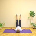 Официальные рекомендации ВОЗ по медитации во время карантина